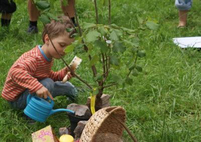 Jeder gießt den Lebensbaum