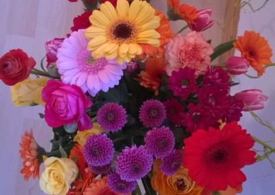Blumen zum Dekorieren